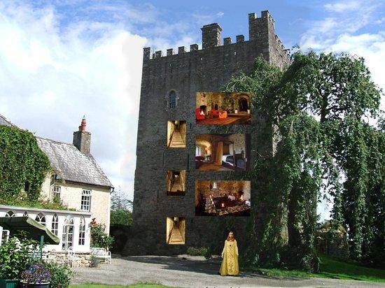 Photo of Ballaghmore Castle Borris-in-Ossory