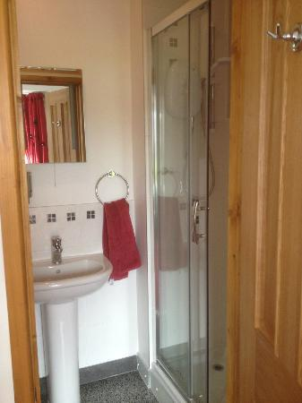 Wheal-E-Mine B&B : En-suite in Room 2