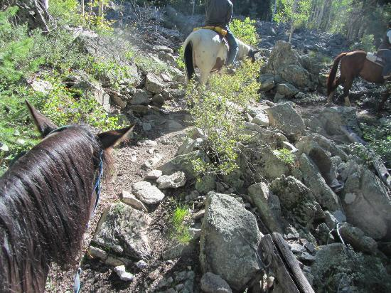 Majestic Dude Ranch: Trail Ride up the Mountain