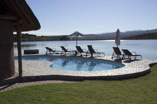 Buffelsdrift Game Lodge: Swimmingpool