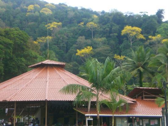 Hotel Samoa del Sur照片