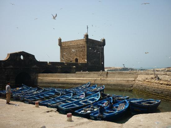 Hotel Blue Kaouki: De Portugese haven in Essaouira