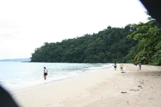Daluyon Beach and Mountain Resort: BEACH