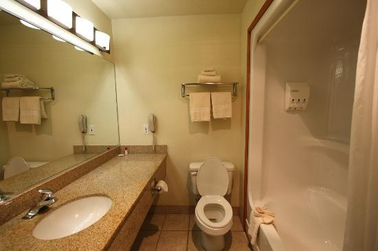 Quality Inn I-15 Red Cliffs: Bathroom