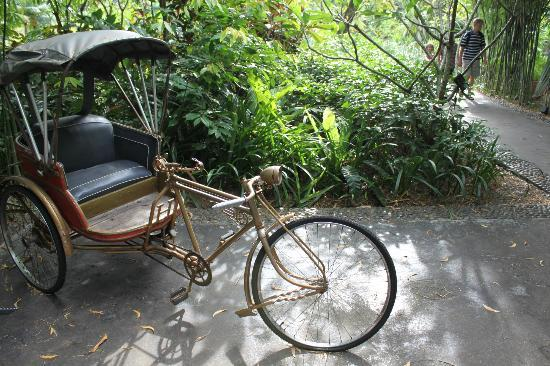 Anantara Mai Khao Phuket Villas: bikes were great fun