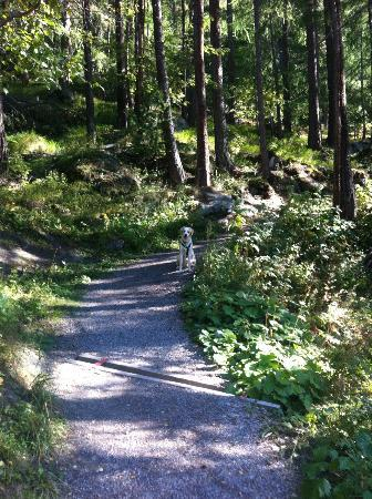 CERVO Zermatt: many choices of where to walk/hike to including great restaurants for lunch