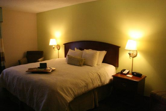 Hampton Inn Front Royal: Great Size Room