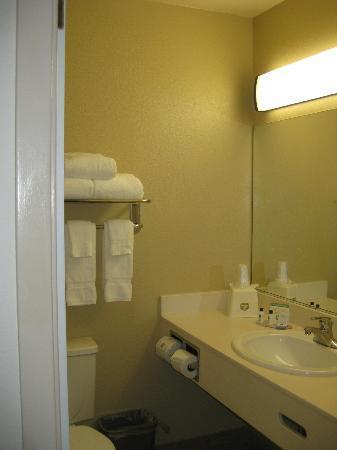 Wyndham Garden Carson City Max Casino: View of bathroom.