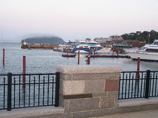 Harborside Hotel & Marina: Une vue directement sur le port