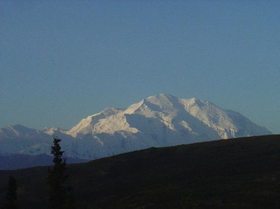 Camp Denali: Denali - the big mountain - as I viewed from my window, the first morning.