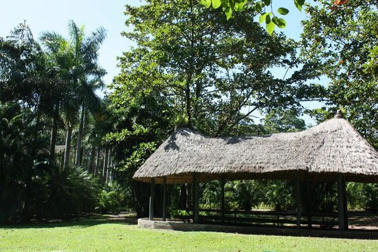 Port Moresby Nature Park: Long Hut picnic table - Aviary Gardens