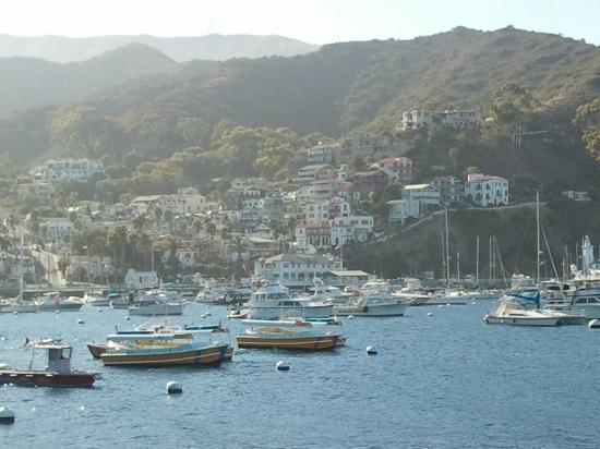 Hotel St. Lauren: View of the port