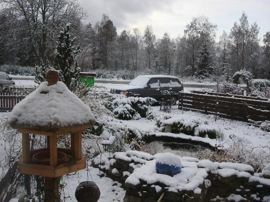 Junipers Guest House: Winter view