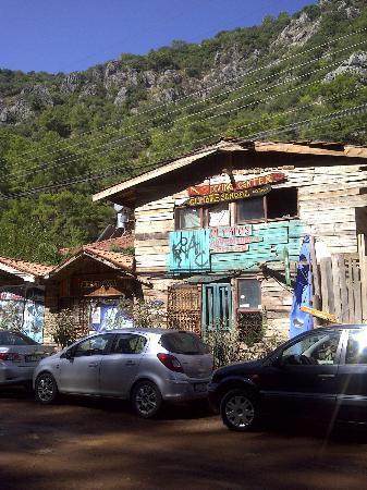 Kadir's Tree House: Dış manzara