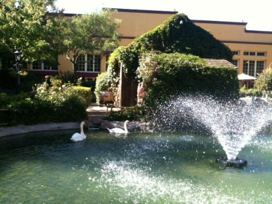 Embassy Suites by Hilton Napa Valley: Hotel grounds were gorgeous.
