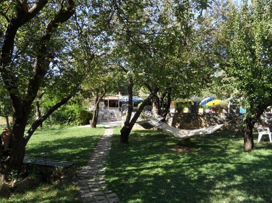 Yakamoz Hotel: Hammocks in garden with pool/bar beyond