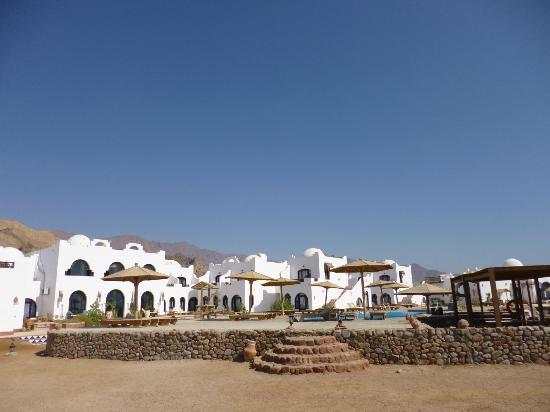 Daniela Village Dahab: The pool area