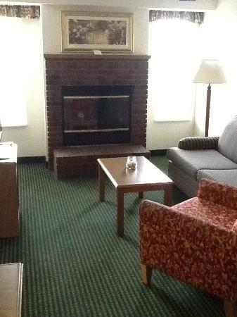 Residence Inn Rockford: Working fireplace.