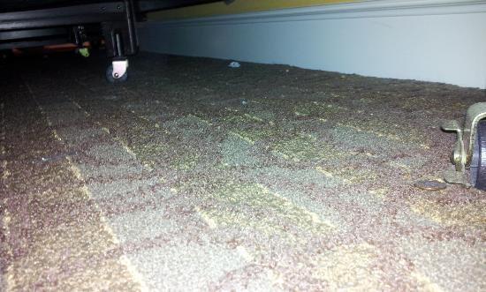 Sandpearl Resort: So-so clean carpet in bay view room