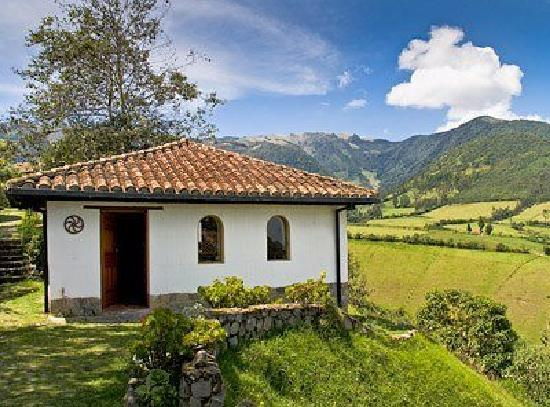 Casa Mojanda: Our Library and the Mountains