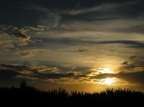 Canaveral National Seashore: Sunset