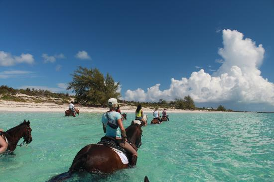 Provo Ponies: riding in the ocean