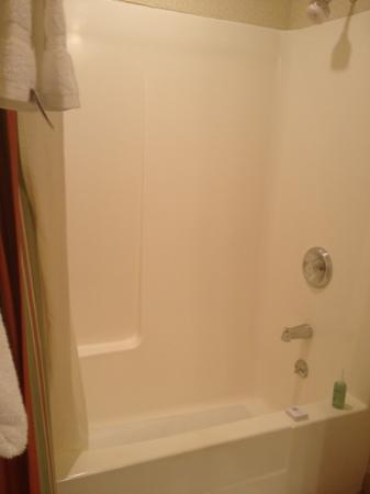 DoubleTree by Hilton Hotel Campbell - Pruneyard Plaza: bathtub in piazza suite