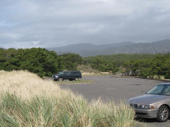 Parking lot at Bob Straub State Park