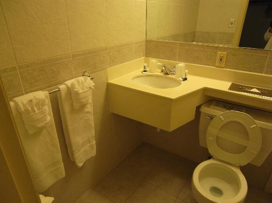 Hyannis Travel Inn: Clean bathroom