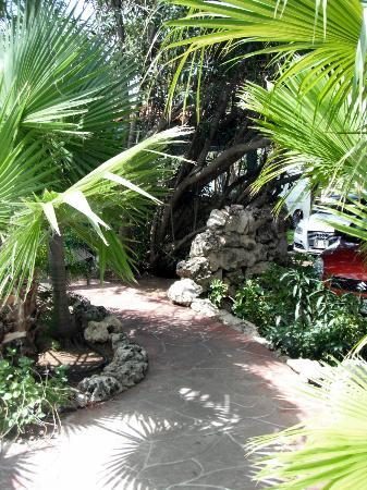 Boardwalk Hotel Aruba: Path from our Casita to the Lobby/Pool Area