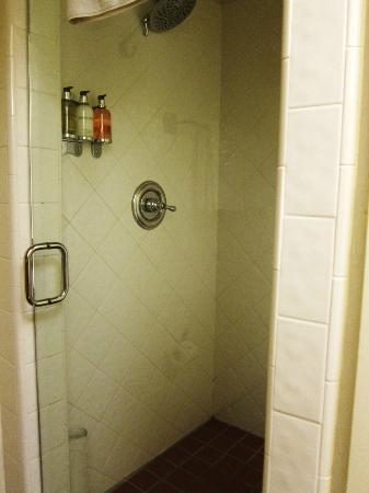 Spanish Garden Inn: shower (rain shower head not pictured)