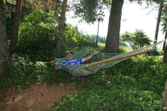 Wine Country Farm: My husband taking a much needed rest in the very beautiful, peaceful garden area.