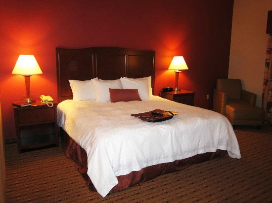 Hampton Inn and Suites Arcata, CA: king bed