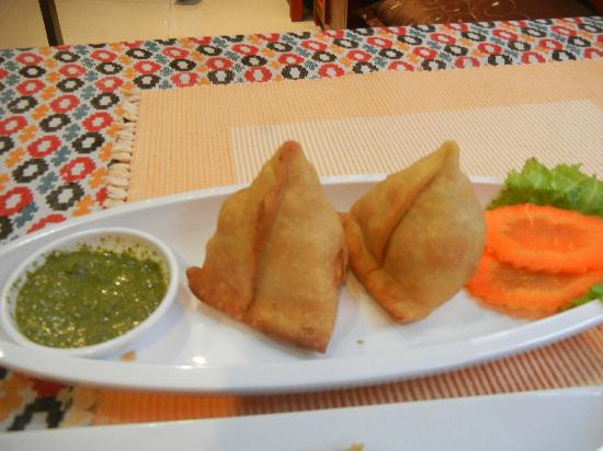 Himalaya Residence: Try their chicken samosa ... It's the best tasting samosa I've ever eaten.
