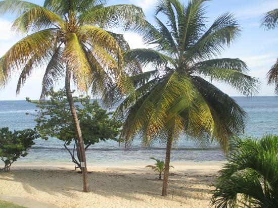 Grenadian by Rex Resorts: more views