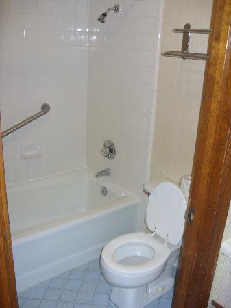 Pine Acres Lodge: shower and toliet
