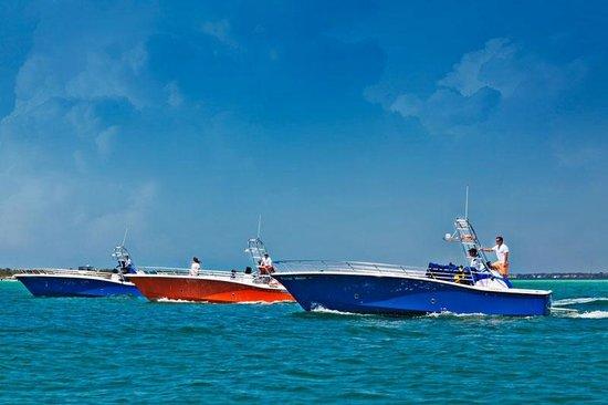 Destin Parasailing: Parasailing boats on the Gulf