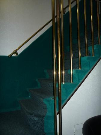 Hotel Antica Casa Carettoni: alfombrilla en las paredes, nido de insectos