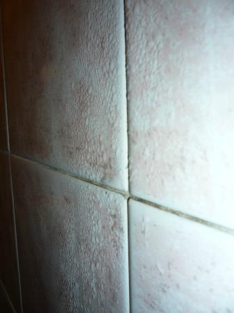 Hotel Antica Casa Carettoni: la pared del baño SIEMPRE estaba asi, condensando agua