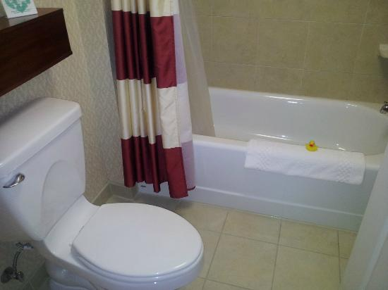 Residence Inn East Rutherford Meadowlands: Salle de bains