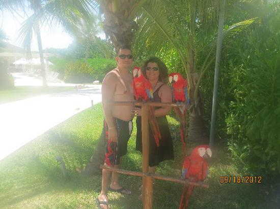 Live Aqua Beach Resort Cancun: Parrots are gorgeous!
