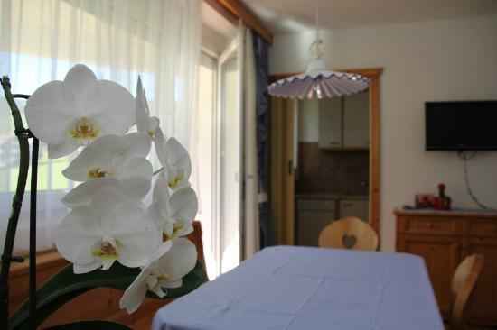 Residence Catarina Lanz: Particolare