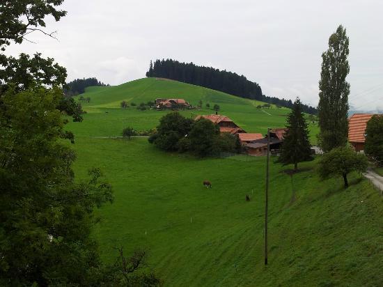 Hotel Appenberg : Grünes Emmental