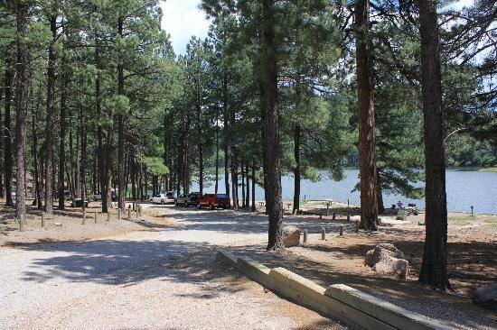 Fenton Lake State Park: Fenton Lake Picknick Area
