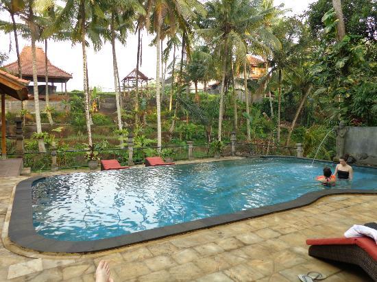 Narasoma Homestay: pool