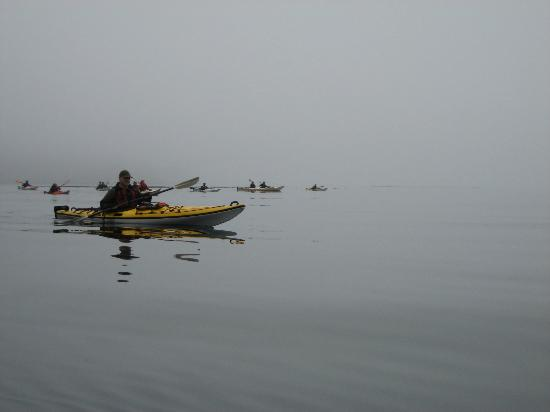 Spirit of the West Adventures: early morning paddle