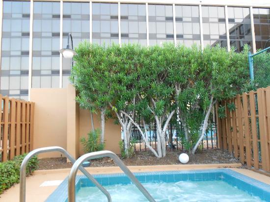 โรงแรมเบสเวสเทิร์นพลัสออลันโดเกตเวย์: Jacuzzi Area