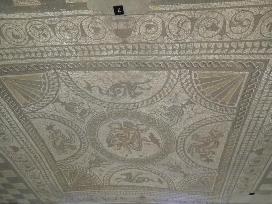 Fishbourne Roman Palace: Famous Dolphin mosaic