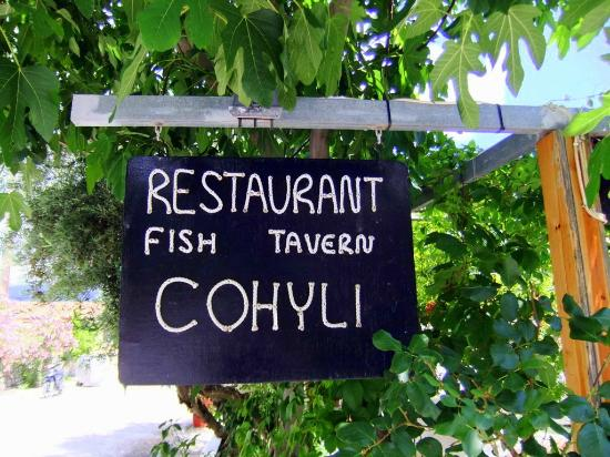 Hotel Cohyli: The restaurant is the best in Town