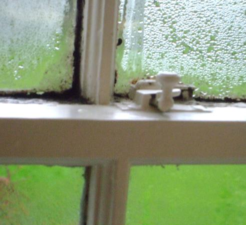 Lovelady Shield Country House Hotel: Severe mould on window (2)